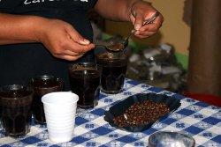 Regelmäßige Qualitätskontrolle schon bei den Produzenten sichert hohe Kaffeequalität